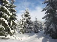 winterlicher Rennsteig