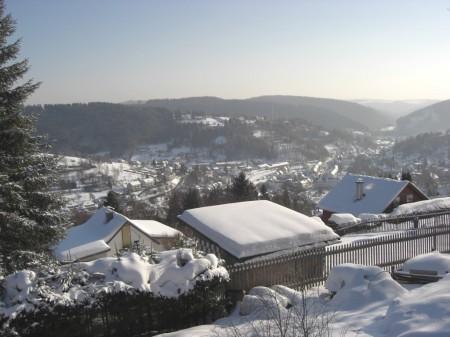 Blick von Fellberg auf Steinach