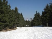 Waldweg zum Schneekopf Ostern 2009